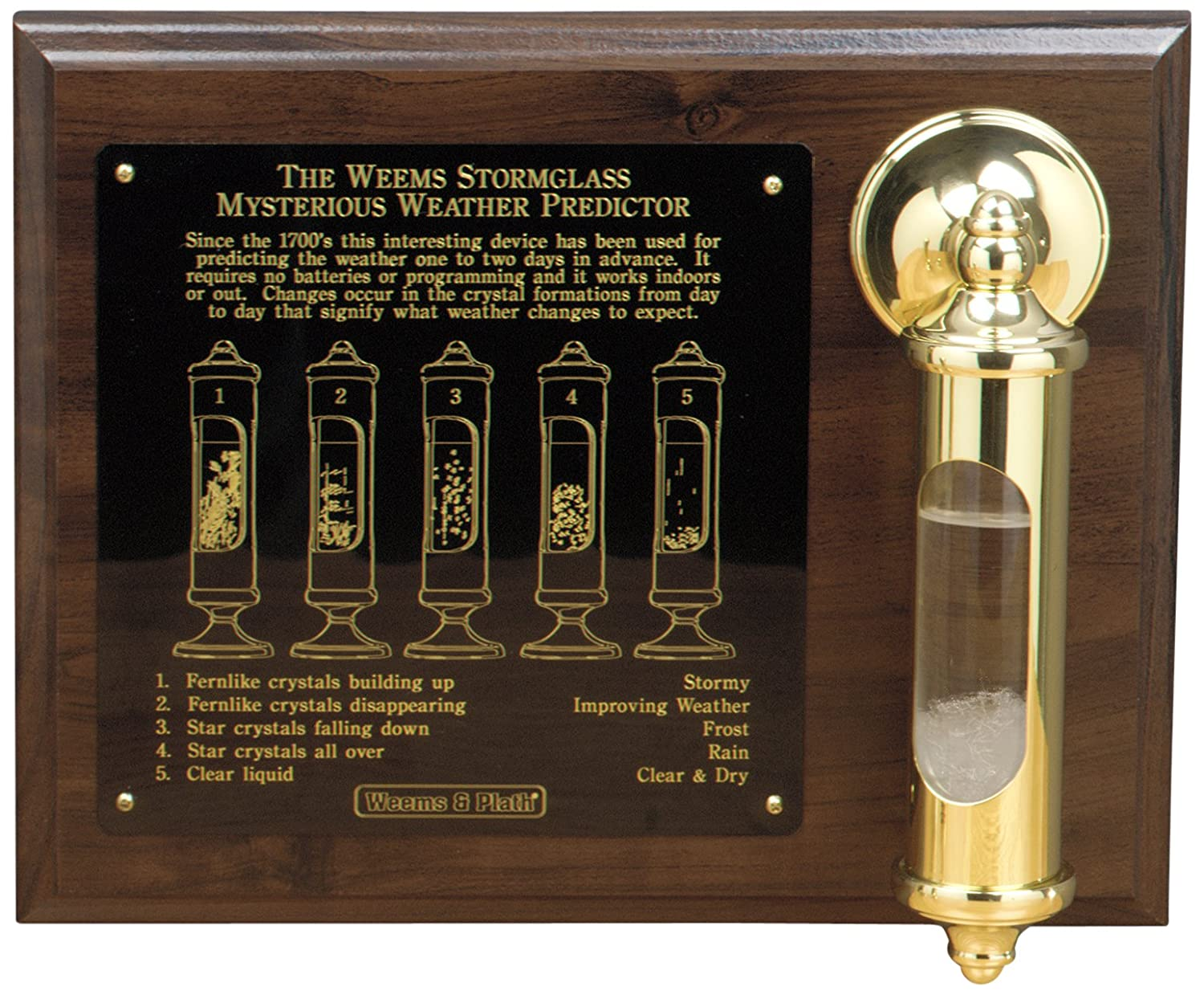 Weems And Plath Stormglass con Display, Brass 200SET