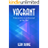 Vagrant: From newbie to professional in One Day! (English Edition)
