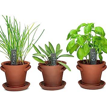 indoor window garden. window garden rustic charm herb trio kit with planter pots, slate markers, fiber soil indoor