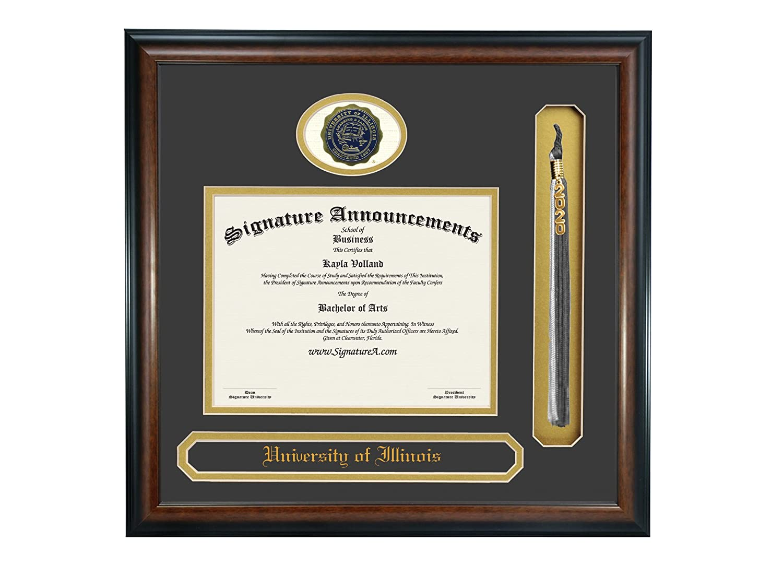 Signature Announcements University of Illinois at Urbana-Champaign Undergraduate Professional//Doctor Sculpted Foil Seal Name /& Tassel Graduation Diploma Frame 16 x 16 Matte Mahogany