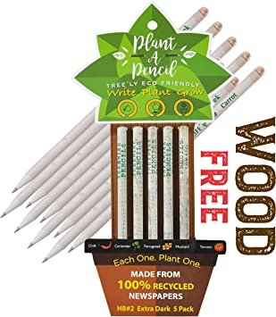 Box of 10 Eco Friendly Gift Set 2B Recycled Paper Pencils with Assorted Seeds
