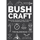 Bushcraft : Bushcraft 101 Basic Guide To Survive In The Wilderness Like A Pro (The Blokehead Success Series) (English Edition)
