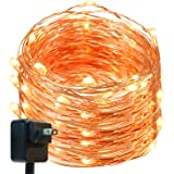 Fairy Lights, DecorNova 120 LEDs 40 Feet Flexible Copper Wire Starry String Lights Firefly Lights with 3V Adapter for Christmas Parties Weddings Holidays Bedroom Decorations, Warm White