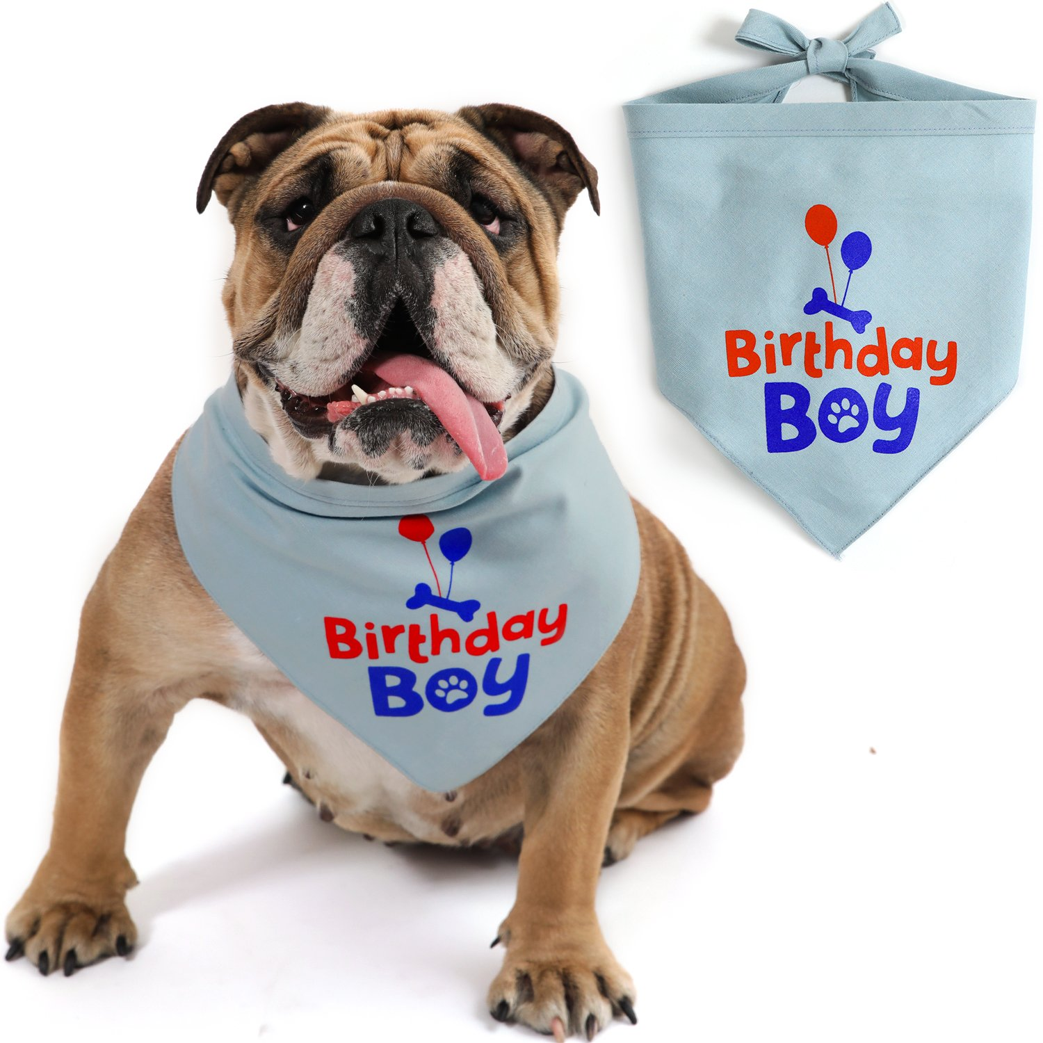 JOYLOADER Dog Birthday Bandana Boy - Dog Birthday Party Supplies - Birthday Boy Dog Bandana - Ideal Birthday Gift Idea for Pet