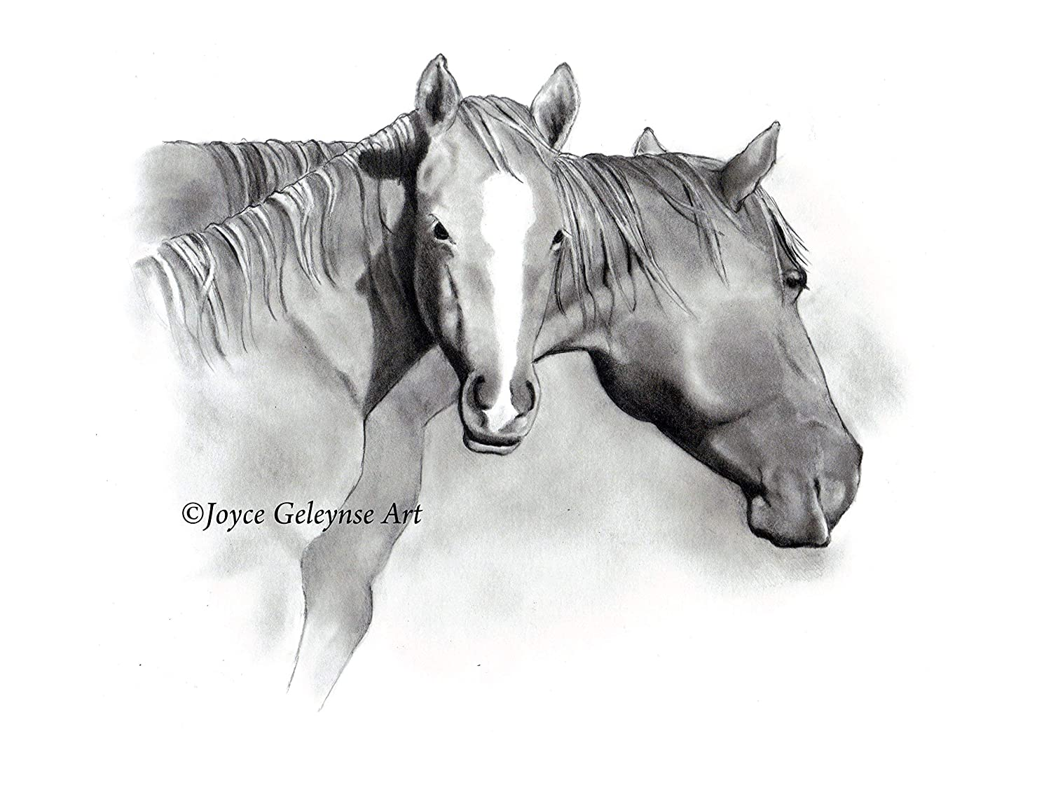 Amazon com horses in pencil art print mare and foal pencil drawing 8 by 10 free standard shipping handmade
