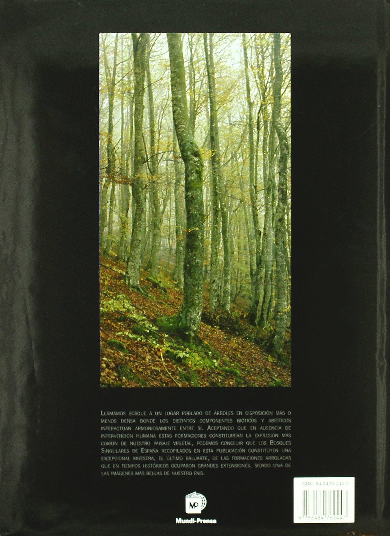Bosques monumentales de España: Amazon.es: Mundi-Prensa: Libros