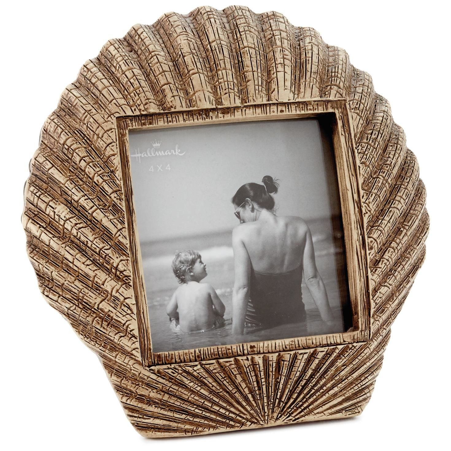 Scallop Seashell Metal Picture Frame, 4x4 Picture Frames Animals & Nature