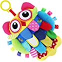 Teytoy Crinkle Cloth Soft Rattle Plush Owl Toy