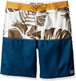 Billabong Boys' Lo Tide Stretch Boardshorts