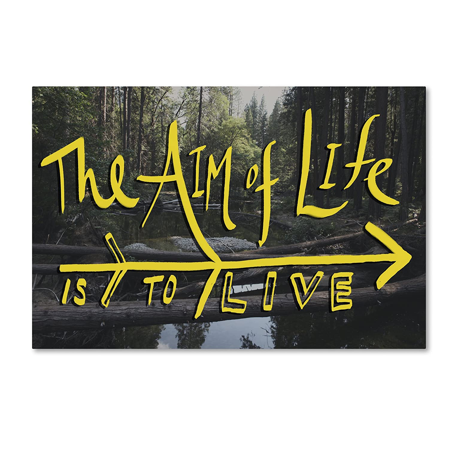 Trademark Fine Art Aim of Life Wall Decor by Leah Flores, 30-Inch X 47-Inch