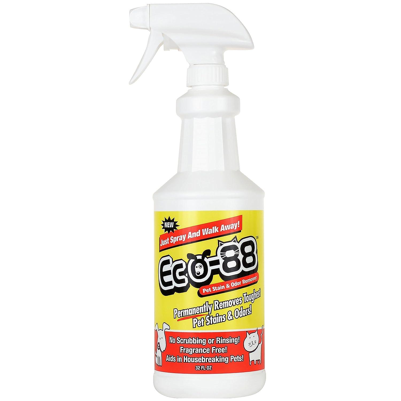amazon com eco 88 pet stain and odor remover carpet