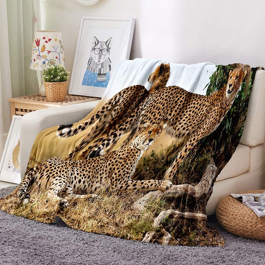 Africa Leopard Flannel Soft Throw Blanket for Boys or Girls, Cheetahs Mother and 2 Young Baby Looking for Food Dangerous Exotic Animals, Lightweight Warm Cozy Print Fleece Blanket, for Bed Couch Chair
