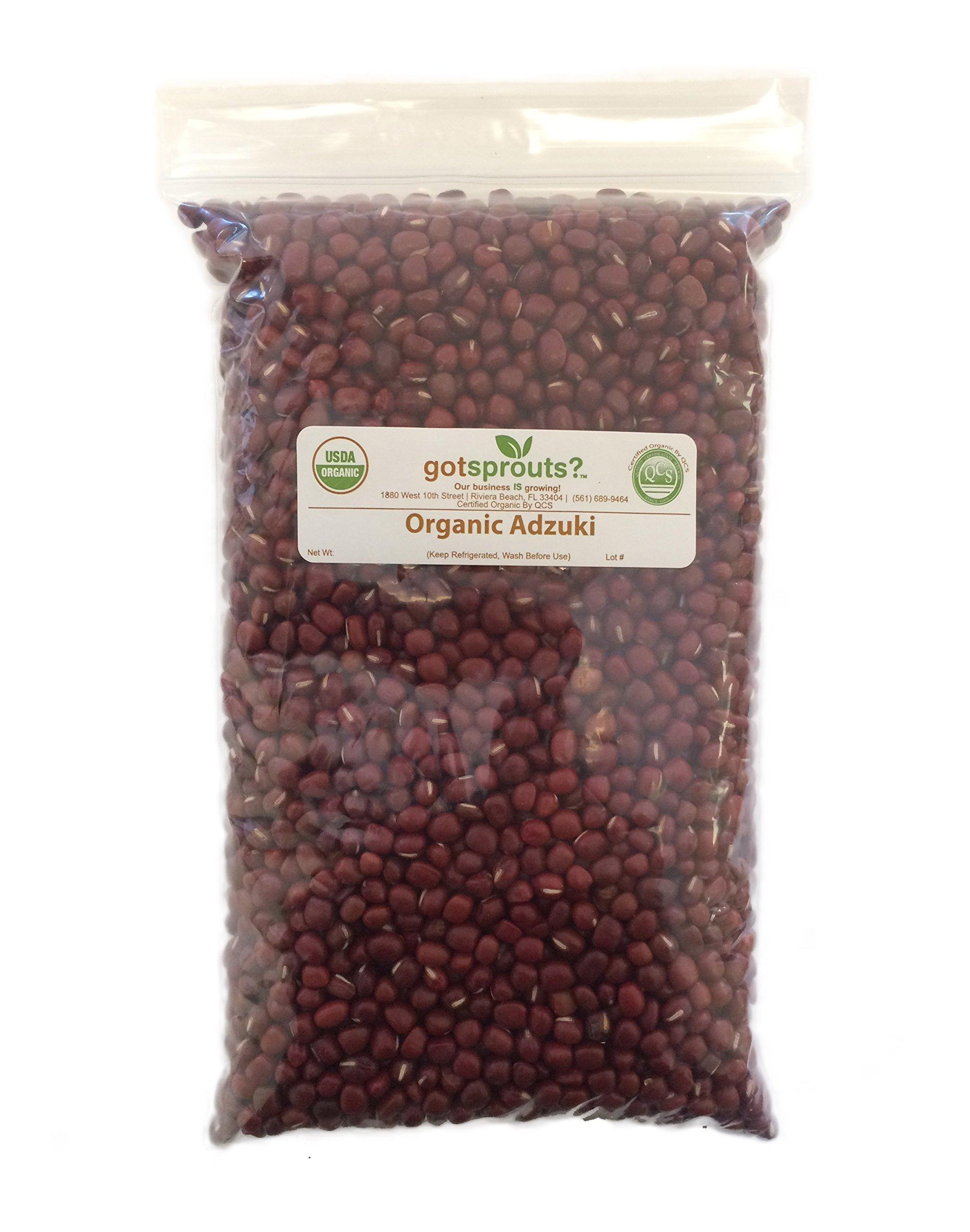 1 LB Organic Adzuki Beans