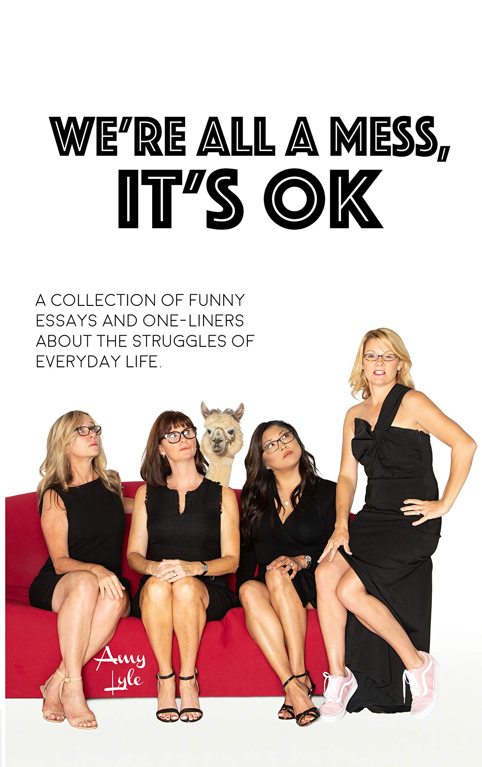 We're All A Mess, It's OK: A collection of funny essays and one-liners about the struggles of everyday life