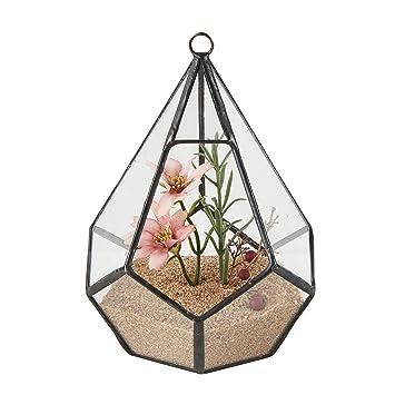 Alicemall Glasblumentopf Blumen Deko Fur Hochzeit Fur Balkon