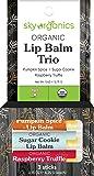 Organic Holiday Lip Balm Trio by Sky Organics (3 Sticks) Holiday Fall Flavors Moisturizing Lip Balm Gift Set Pumpkin…
