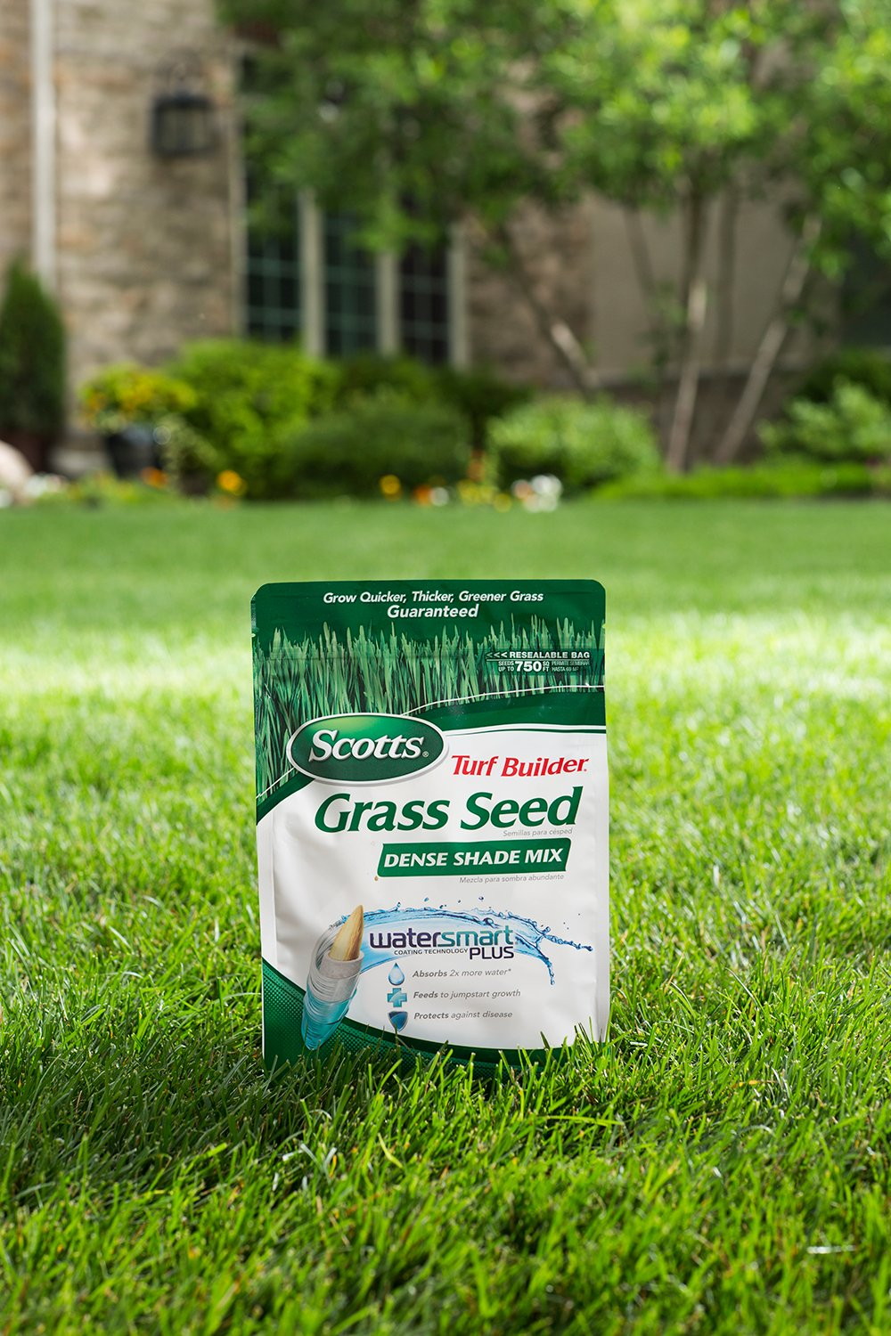 Amazon: Scotts Turf Builder Grass Seed  Dense Shade Mix, 7pound (not  Sold In Louisiana): Patio, Lawn & Garden