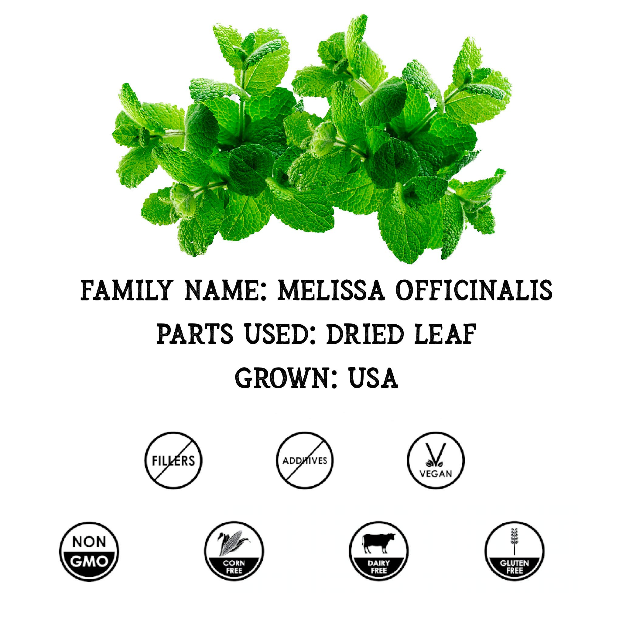 Lemon Balm Tincture, Organic Lemon Balm Extract (Melissa officinalis) Supplement: Calming, Mental Support, Anti-Viral, Anti-Anxiety 2 Oz, 670 mg by Florida Herbs (Image #3)