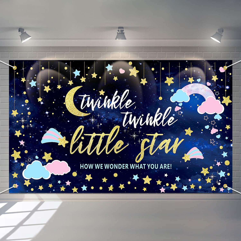 TWINKLE TWINKLE Backdropbanner Birthday Backdrop-Printed Or Digital File