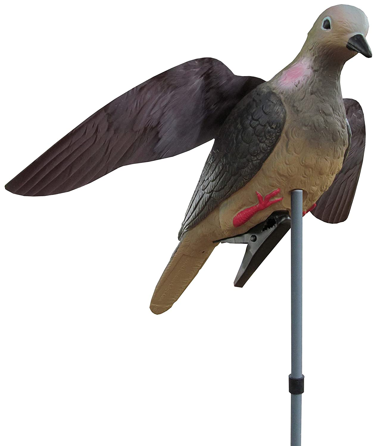 WINGED DOVE DECOY WITH STAKE