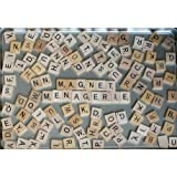 Alphabet Magnet Letters - Choose Your Own Word