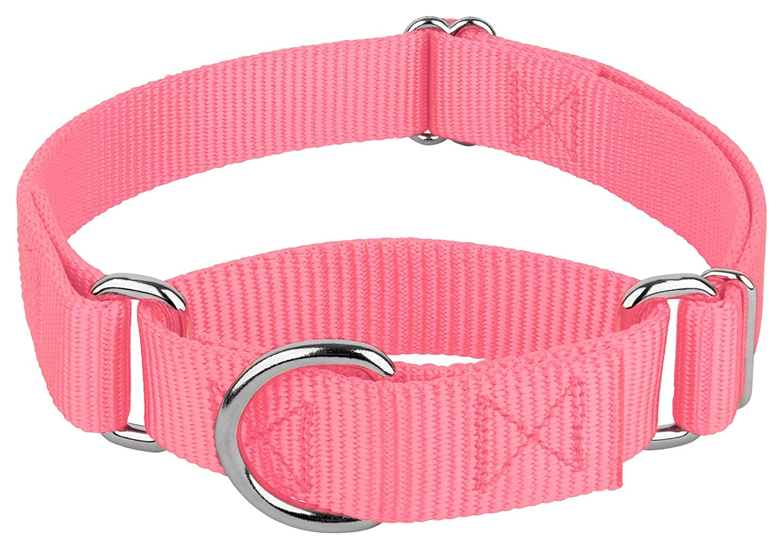 Country Brook Petz Martingale Heavy Duty Nylon Dog Collar