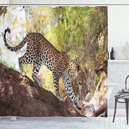 Zoo cortina de ducha por Ambesonne, leopardo PANTHERA pantus en ...
