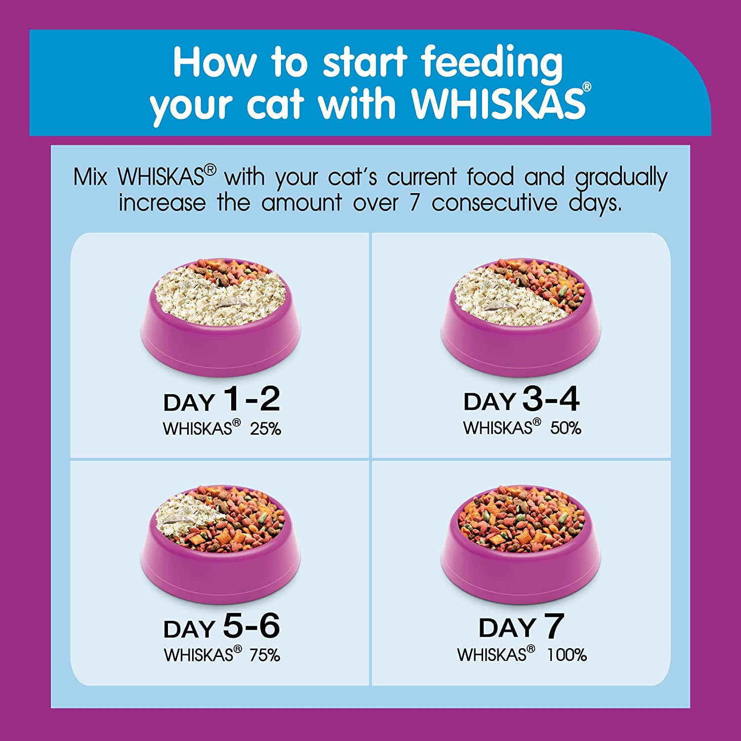 How To Prepare Dry Cat Food