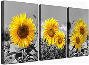Sunflower Wall Art for Living Room Black White Flowers Wall Decor Yellow Floral Canvas Prints Painting Wood Frame with Hook Decorative Botanical Blossom Picture Artwork in 3 Panels 12×16 Inches