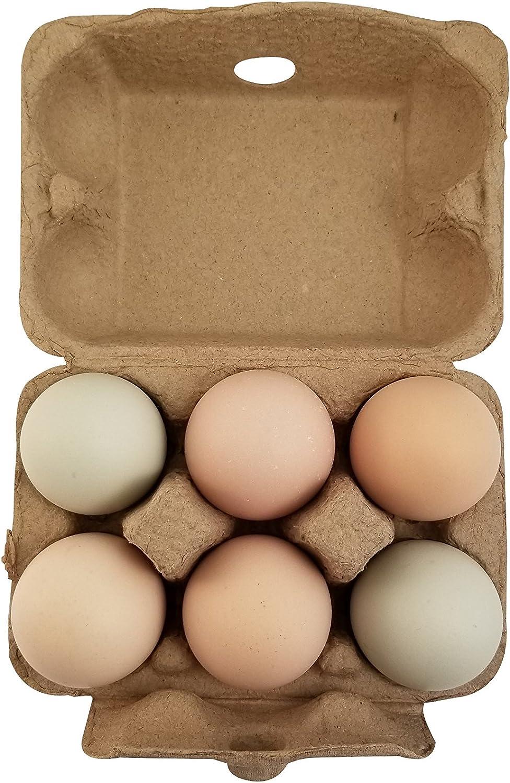 50 x EGG CARTONS FOR 6 EGGS Half Dozen New Carton White Brown