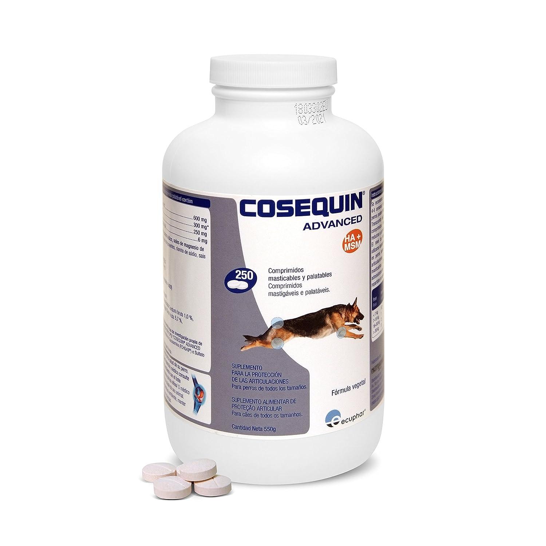 COSEQUIN SE506114 Cuidado Cadera y Articulaciones Canino DS Msm Ha 250CPD: Amazon.es: Productos para mascotas