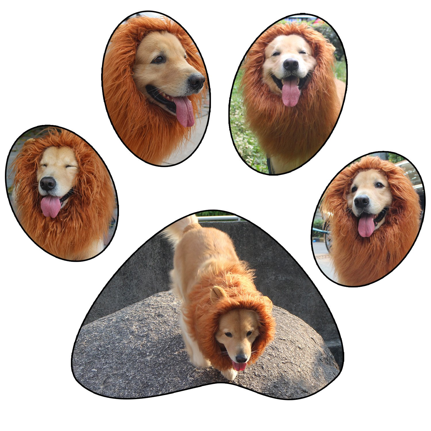 RWM ICCKER Lion Mane for Dog - Halloween Dog Costume Large Size - Hilarious Realistic & Funny Majestic Looking Hoods with Ear and Tails - Great Pet Gift Choice for Christmas,Pet Birthday Party by RWM (Image #7)