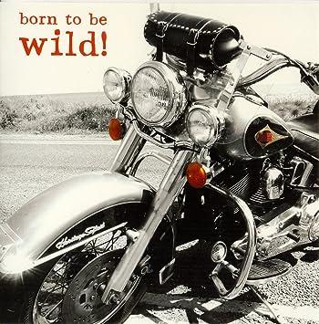 Born To Be Wild Motorbike Birthday Card Pigment Photo Greeting Cards