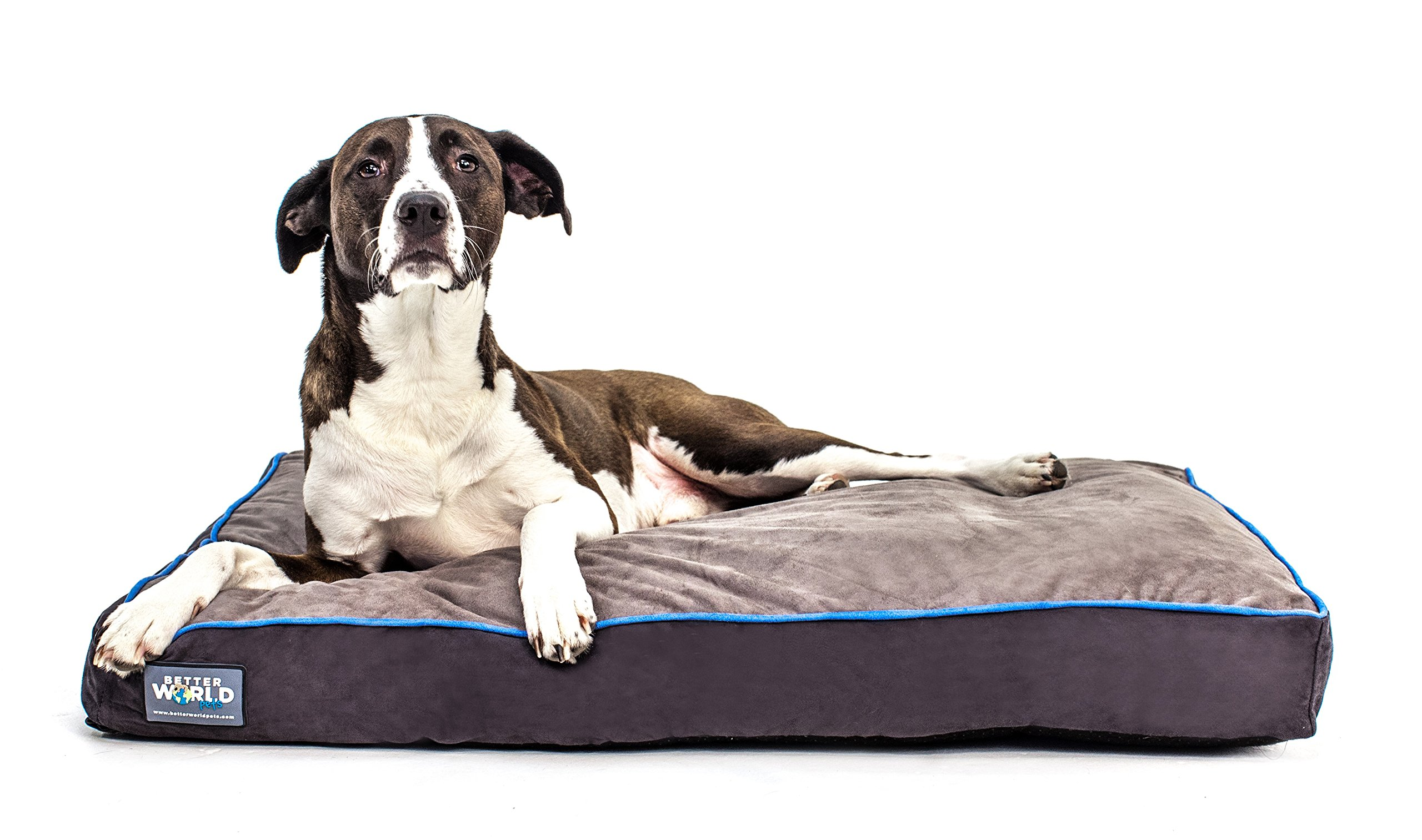 First-Quality 5'' Thick Orthopedic Dog Bed | Pure Premium Memory Foam | Ideal for Aging Dogs | Waterproof | Helps Ease Pain of Arthritis & Hip Dysplasia | 180 GSM Removable Washable Cover