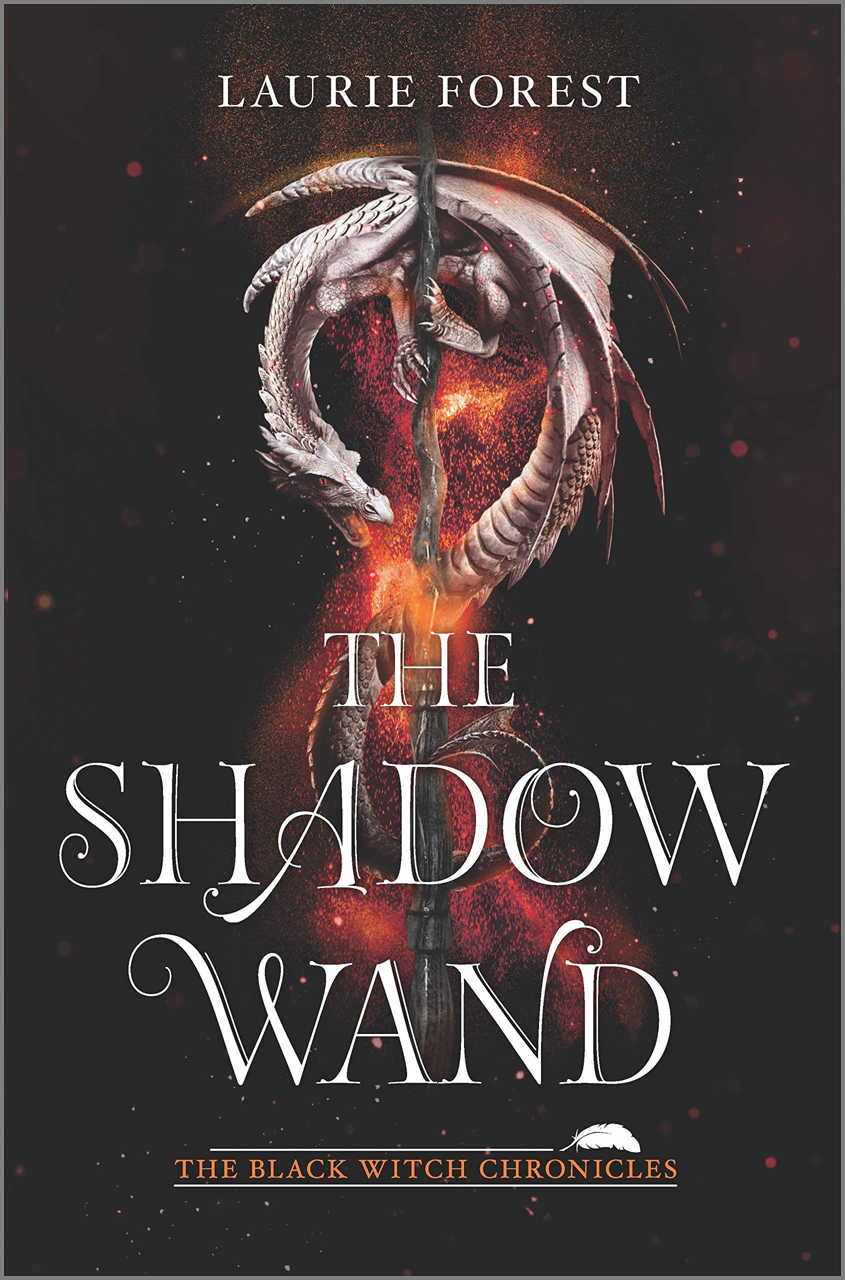 Amazon.com: The Shadow Wand (The Black Witch Chronicles ...