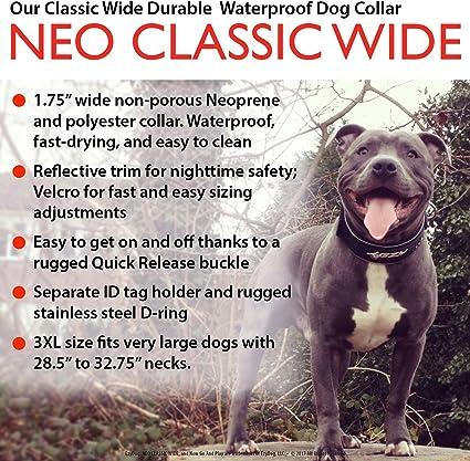 EzyDog Collar Neo Classic