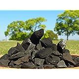 土壌活性剤「炭バクチャー」10kg