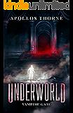 Underworld - Vampire Gate: A LitRPG Series
