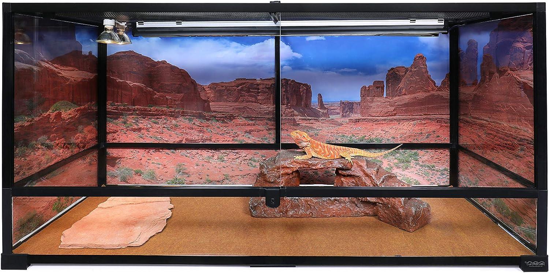 for 36Lx24Wx18H Terrarium 3-Sided Wraparound Carolina Custom Cages Reptile Habitat Background; Arches Park Avenue
