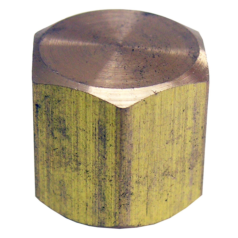 LASCO 17-9143 1//8-Inch Female Pipe Thread Brass Cap