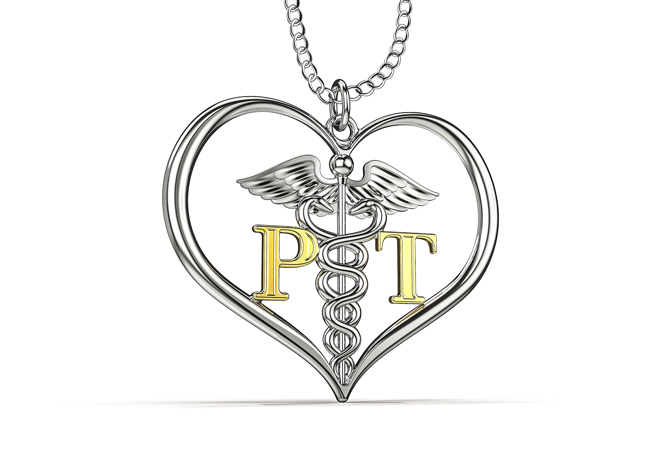 PT Physical Therapist Pendant Necklace Silver & Gold Heart with Caduceus, PT Gift