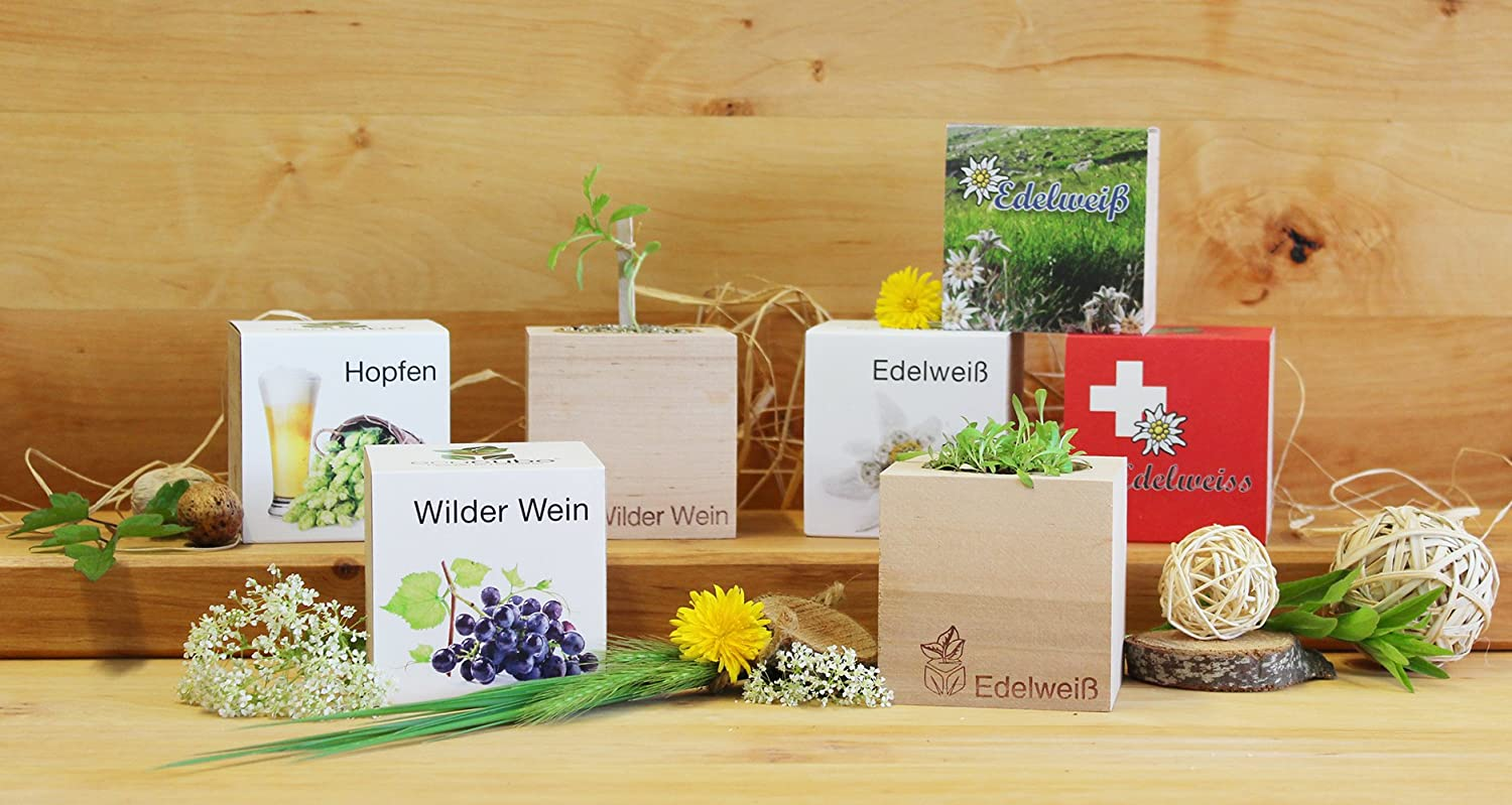 Sustainable /& Unusual Gift Feel Green Ecocube Hops Craft Beer Component Original Grow Your Own Hop Kit in A Wooden Cube| Made in Austria 100/% Eco Friendly