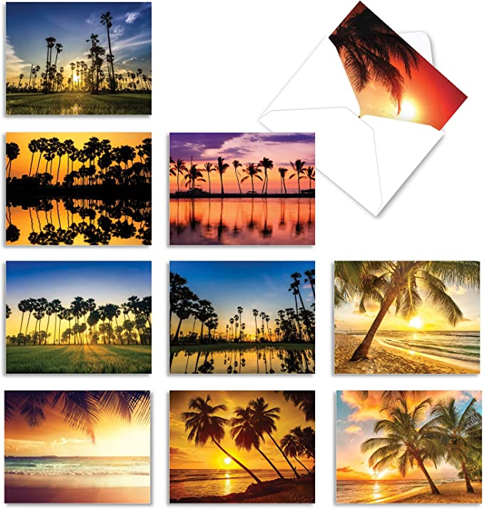Peace Symbol with Shells Beach and Palms Greeting Note Tropical Card Cards 5 12 x 4 14 Blank