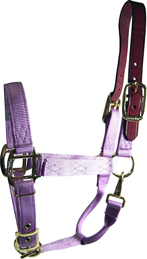 Hamilton 1-Inch Nylon Adjustable Horse Halter