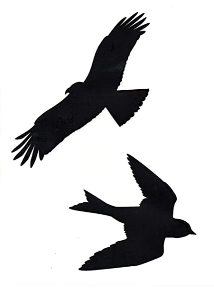 Bird silhouette window stickers