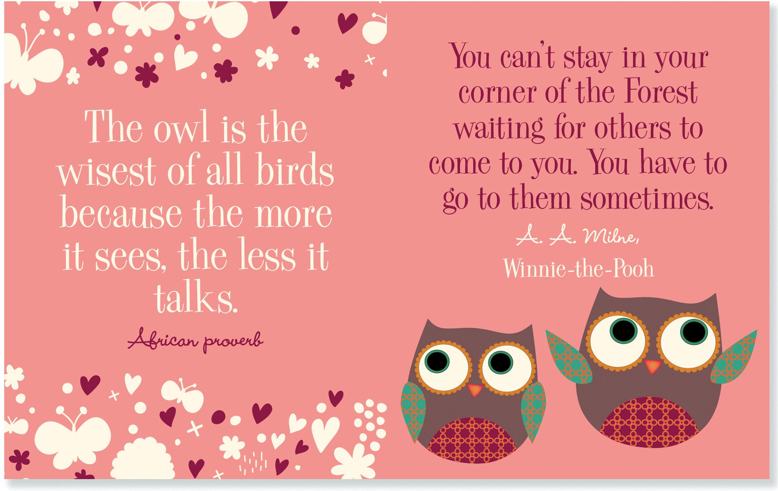 Owl Wisdom (mini Quotations Book): Vicki Fischer: 9781441315922:  Amazon: Books