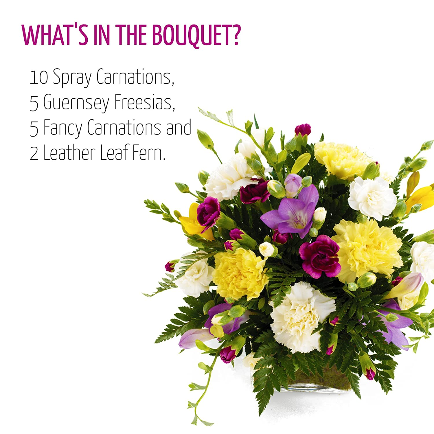 Fresh flowers delivered friendship bouquet including carnations fresh flowers delivered friendship bouquet including carnations and guernsey freesias with free chocolates flower food and bonus ebook guide perfect izmirmasajfo Gallery