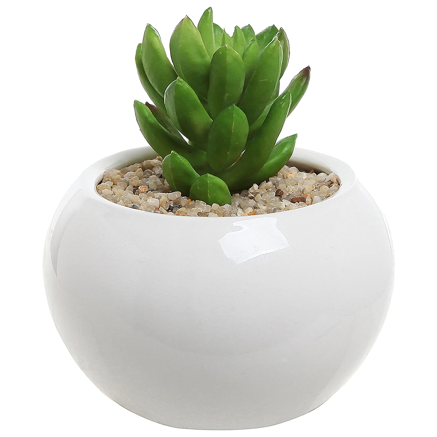 100 cute cactus pots amazon com 3 5 inch small round modern