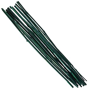 Gardeners Choice BB2 2-Feet Bamboo Stakes