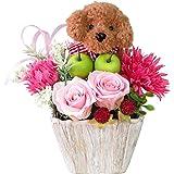 花 誕生日プレゼント 女性 誕生日 プレゼント プリザーブドフラワー バラ トイプードルのフラワーアレンジメ ント